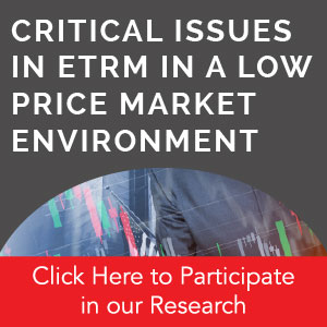 Critical Issues in ETRM in a low price market environment