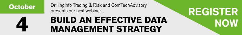 Build an Effective Data Management Strategy